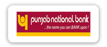 Punjab National Bank Limited logo